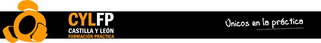 Castilla y León Formación Práctica Logo